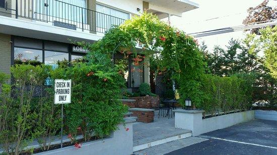 自由港濱海飯店照片