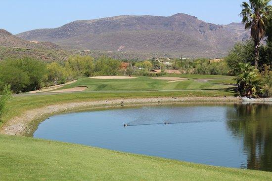 Cave Creek, AZ: View from tee box at Rancho Manana.