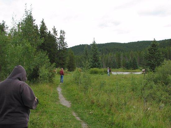 Bragg Creek, Canada: Mclean Creek Pond