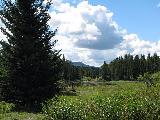 Bragg Creek, Canadá: Mcleod Creek Ponds
