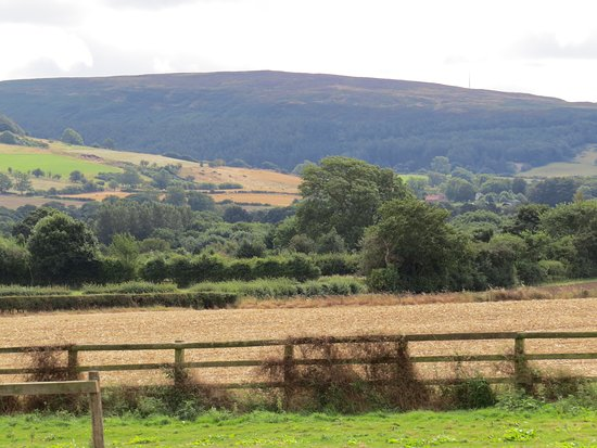 Stokesley, UK: This is what you see from the back of the cottage.
