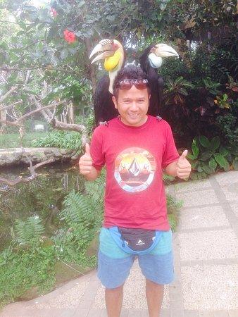 Tulamben, Indonesië: bali bird park Gianyar
