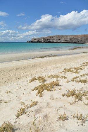 Balandra Beach: Azules y prístinas, la mejor playa de la Baja.