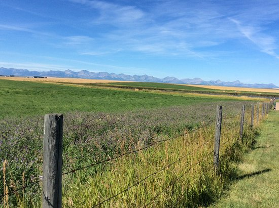Cardston, Canadá: View from property