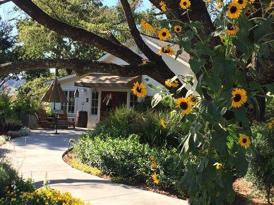 Хилдсбург, Калифорния: photo0.jpg
