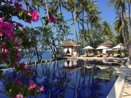 Spa Village Resort Tembok Bali: Welcome foot bath w/local Balinese petals, exceptional spa experiences, poolside oasis, sunset c