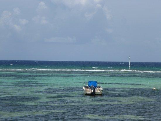 Old Man Bay, Grand Cayman: photo2.jpg