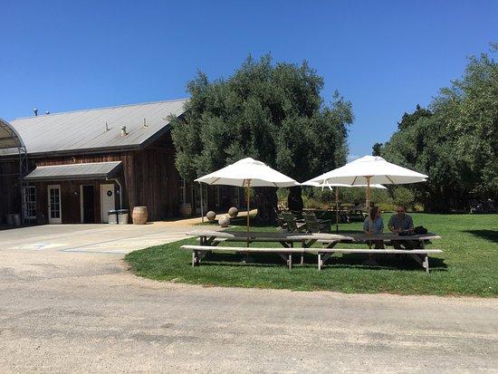 Хилдсбург, Калифорния: Beautiful Bella Vineyards
