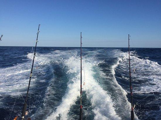 north carolina bass fishing guides