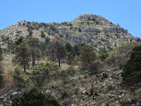 Parco nazionale delle Montagne Guadalupe, TX: View of the peak of Guadalupe Mtn from the trail 2/3 of the way along