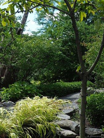 manospa jardin extrieur exterior garden