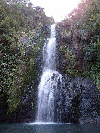 Piha, New Zealand: FB_IMG_1472262571220_large.jpg