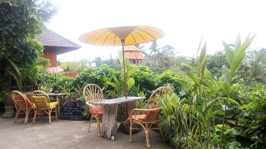 Better view picture of yellow flower cafe ubud tripadvisor yellow flower cafe better view mightylinksfo