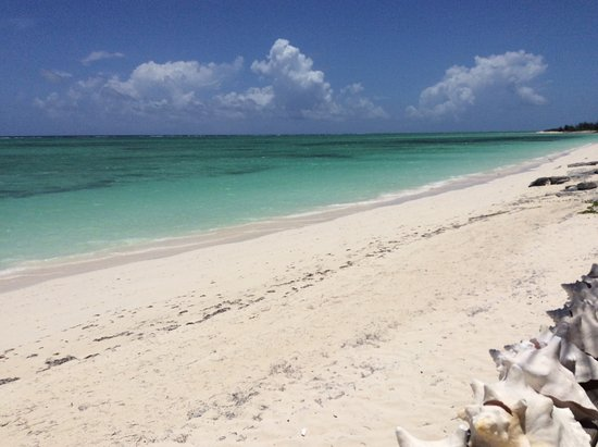 North Caicos: Gorgeous, desolate beach.
