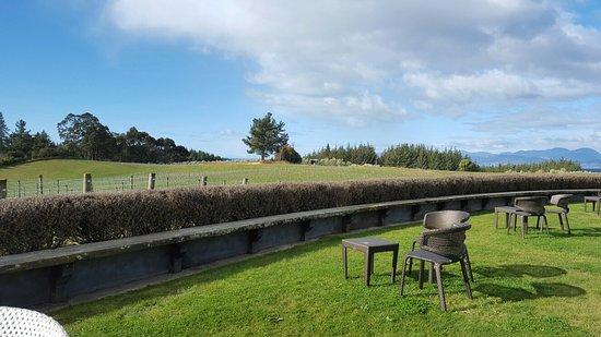Upper Moutere, Nueva Zelanda: TA_IMG_20160827_151652_large.jpg