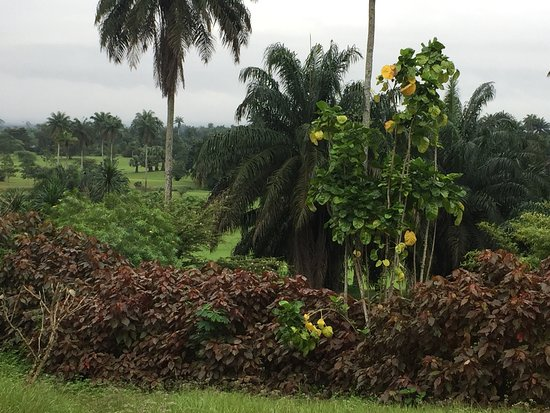 Uyo, Nijerya: photo7.jpg