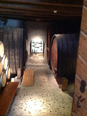 Museum of Viticulture and Wine (Musee de la Vigne et du Vin)