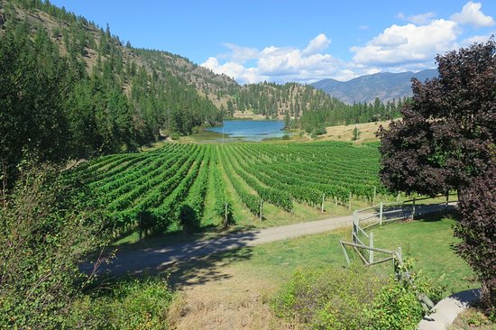 Okanagan Falls, Canada: Green Lake View