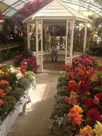 Invercargill, Yeni Zelanda: Formal gardens
