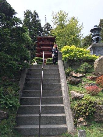 Japanese Tea Garden: photo0.jpg