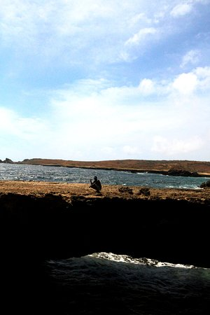 Pelican Adventures: Natural bridge