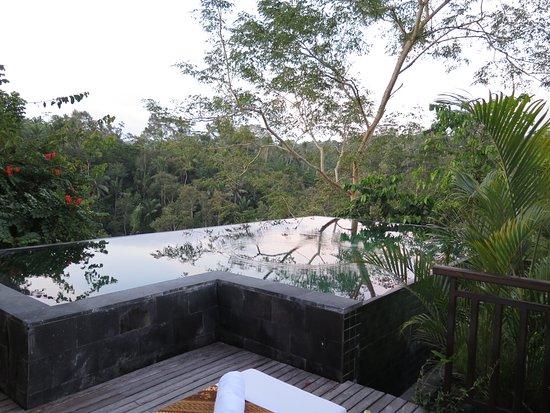Komaneka at Tanggayuda: private pool