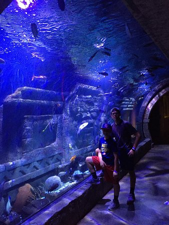 Downtown Aquarium: photo0.jpg