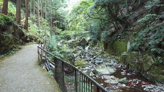 Nabari, Japonya: 整備された歩道