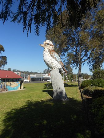 Kurri Kurri, Australien: teh large statue of the kookaburra in the local park...