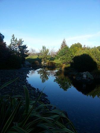 Nelson, Nueva Zelanda: Reflections