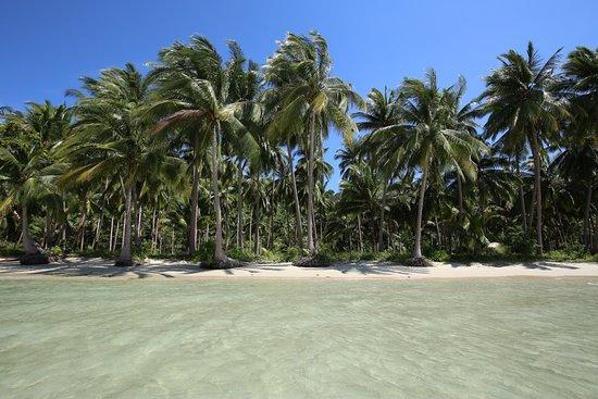 Port Barton, Filippinerna: Preciosa playa en el hotel