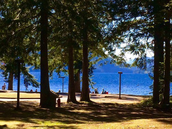 Lake Crescent Lodge: photo1.jpg