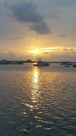 Boyd's Key West Campground: 20160807_070938_large.jpg