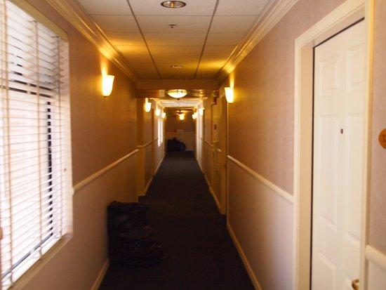 SW Hotel: hallway