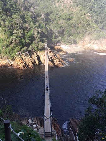 Storms River, Sydafrika: A beautiful path leading from the parking lot to the hanging bridges over where the Storm river