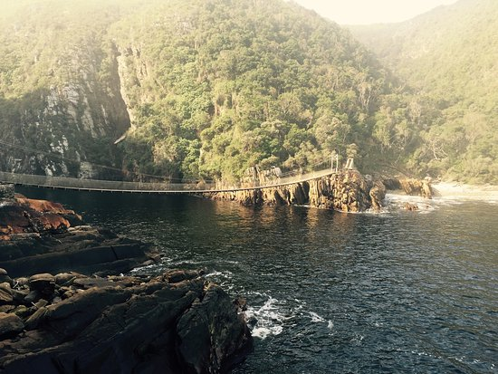 Storms River, Afrika Selatan: A beautiful path leading from the parking lot to the hanging bridges over where the Storm river
