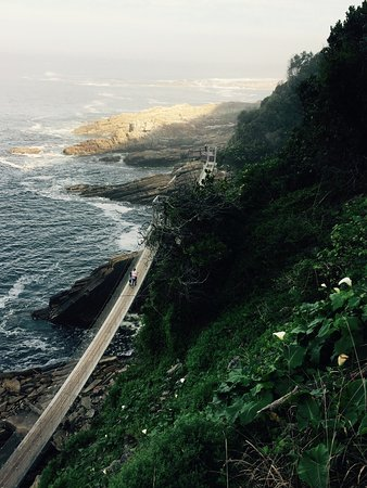 Storms River, جنوب أفريقيا: A beautiful path leading from the parking lot to the hanging bridges over where the Storm river 