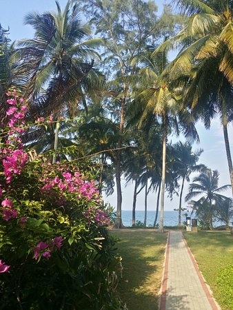 Tanjong Jara Resort: 20160821_172907_Richtone(HDR)_large.jpg