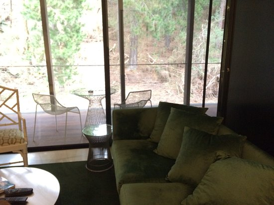 Hepburn Springs, Αυστραλία: This couch was soft, comfortable and looked out onto a wooded hillside.