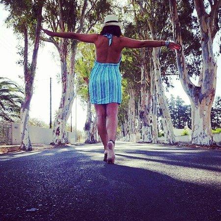 Kolimbia, Grekland: walk alog Eucalyptus road