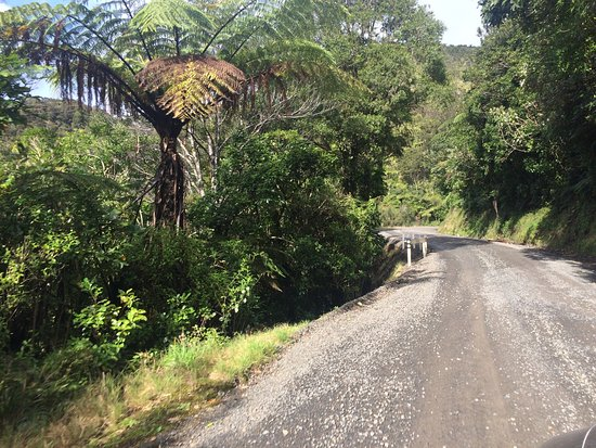 Coromandel, Nouvelle-Zélande : photo3.jpg