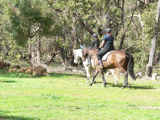 Gidgegannup, Australia: Choose a private ride any day of the week