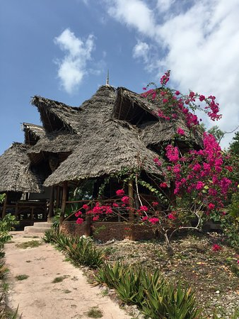 Mabwe Roots Bungalows: Our Villa and the terrace with hammock!