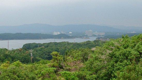 Tomoyama Park : DSC_0285_large.jpg