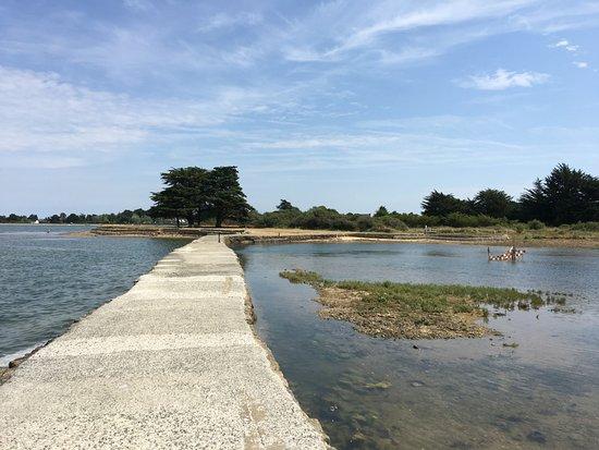 Ile-d'Arz, ฝรั่งเศส: Le moulin à marée de l'Ile d'Arz (Golfe du Morbihan)