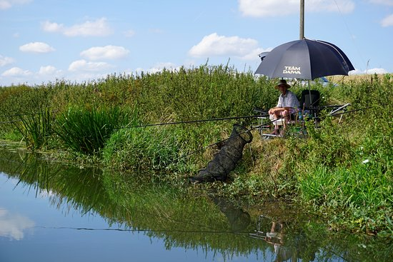 Newenden, UK: fisherman on the bank