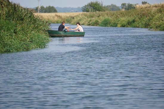 Newenden, UK: oops, which way do I turn the oars, we keep crashing.