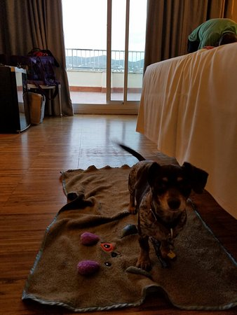 Hotel Subur: 20160805_202522_large.jpg