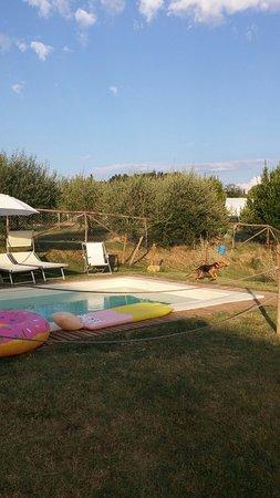 Barberino Val d'Elsa, Italie : 20160821_185100_large.jpg