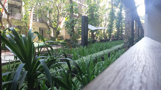The Haven Bali: 20160816_154201_large.jpg